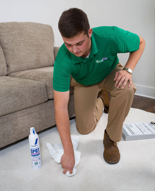 Professional upholstery cleaning services in Petaluma California by On The Spot Chem-Dry